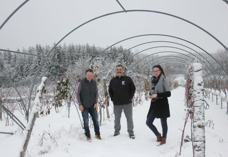 Eric pauchon, Denis Chirouze et Adeline Mialon du GIE Fruits rouges des Monts du Velay.